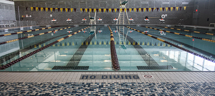 The campus pool is open for both serious athletes and recreational swimmers.
