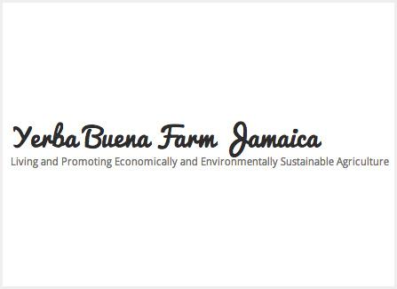 <p>Yerba Buena Farms Jamaica</p>
