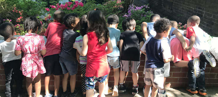 1<p>Children explore and learn about the flowers on the Brooklyn College campus.</p>