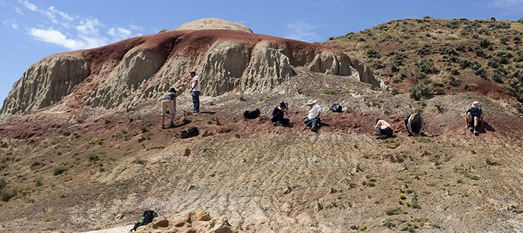 Our summer archaeological field school takes you on digs around the world.