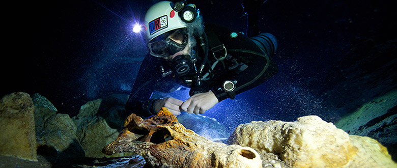 Our faculty go to great depths to solve life's mysteries.