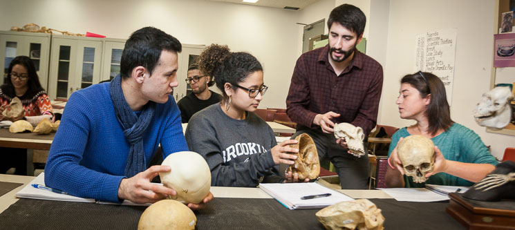 <p>Dr. Chester teaching students enrolled in ANTH 3240: Osteology</p>