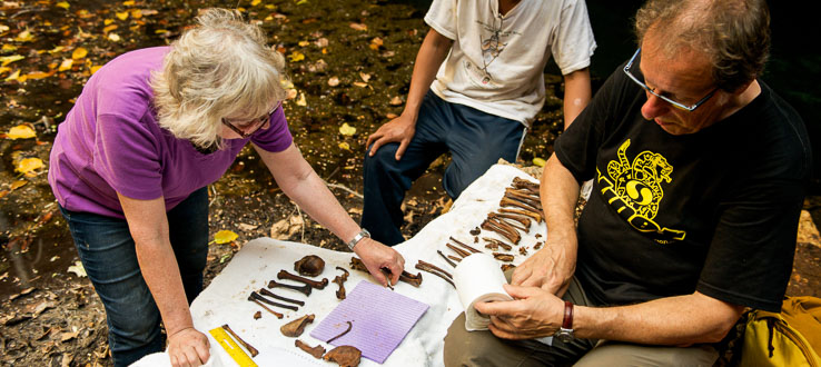 <p>Professor Alfred Rosenberger and colleagues sorting and identifying primate bones in Madagascar.</p>
