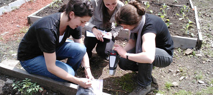 Student Research in a Community Garden