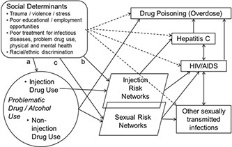 Diagram of social and behavioral determinants of health, syndemics and health disparities