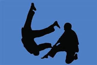 A silhouette of two martial arts practicioners