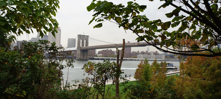 Learn about Brooklyn Bridge Park and urban sustainability at the Brooklyn waterfront.