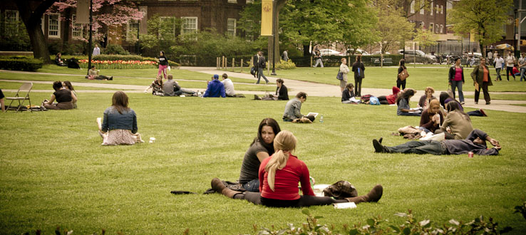 The Central Quad is a popular spot for everyone.