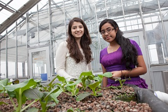 <p>Samantha Vouyiouklis (left) and Tanzina Nawrin enjoy observing the plant life that grows in the Brooklyn College Greenhouse.</p>