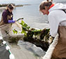 Brooklyn College Receives $500,000 From NOAA To Promote Coastal Resilience Through Environmental Literacy