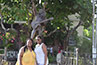 <p>Nicole St. Clair and BLMI administrative assistant Taisha Manigat pose in front of a Bob Marley statue outside of the Bob Marley Museum in Kingston, the country's capital.</p>
