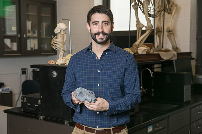 <p>Stephen Chester holds a replica of one of the largest mammal cranial fossils that was found during the expedition. It was created from the 3-D printer in his laboratory at Brooklyn College. (David Rozenblyum/Brooklyn College)</p>