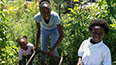 <p>Brooklyn College student Shalawn Facey works in the garden with her two children.</p>