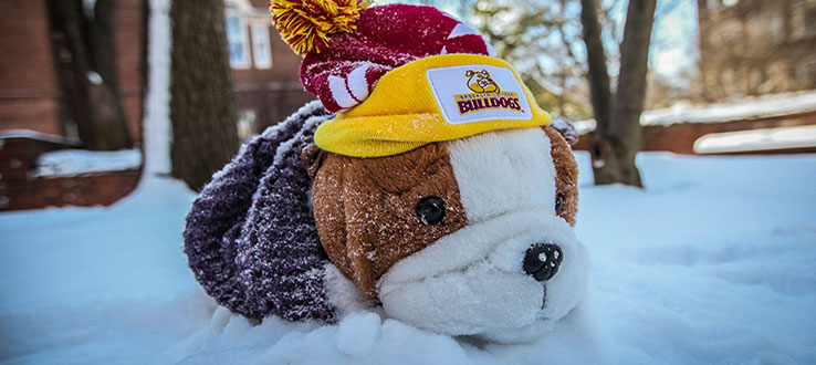 Our mascot, Buster, can be spotted around campus in every season.